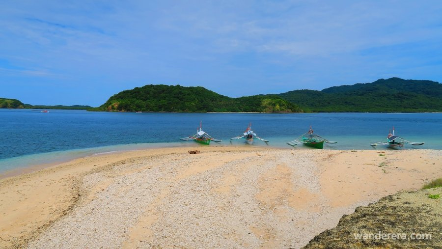 Crocodile Island, Cagayan: No, There Are No Crocodiles
