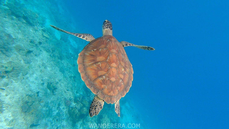 Tulapos Marine Sanctuary